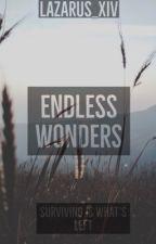 Endless Wonders by Lazarus_XIV