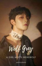 Wolf Grey : A Girl Meets Werewolf by _shihan