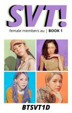 SEVENTEEN | svt female members au by btsvt1d