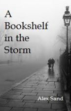 A Bookshelf in the Storm by AlexSand495
