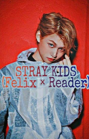 Stray Kids ( Felix × Reader) - Legendary_Headhunter - Wattpad