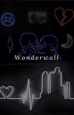 Wonderwall by HibernateonJuly