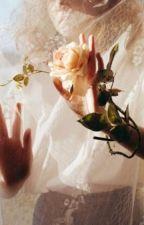 Rose Petals by littlenerdrosey