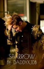 Sparrow - Justin Bieber (NOT MINE) by daddyxjdb