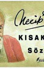 NECİP FAZIL KISAKÜREK ' İN SÖZLERİ  by EDANUR_0909