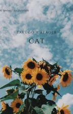 Cat | K. Bakugou  by AnimeTrashhhhh