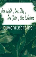 One Night, One Day, One Year, One Lifetime *translation* by Juveniledrama