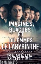 Imagines, blagues et dilemmes Le Labyrinthe by marwa130