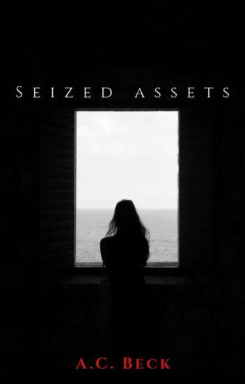 Seized Assets (Asset Series Book #2)