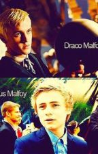 The Malfoy Potter by ShipMaster15