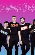 Everything's Perfect//The Sidemen//  by SidemenandFriends666