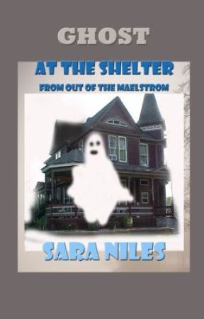 The Ghost in the Shelter by Sara Niles by SaraNiles
