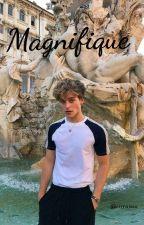 magnifique® by rrrraissa