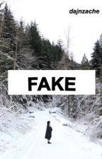 Fake (ft. niall horan) by dannikasnga