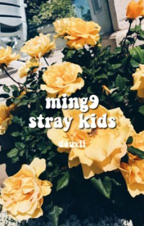 MING9 ⇢ STRAY KIDS by douxii