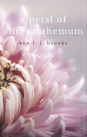 A Petal of Chrysanthemum