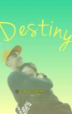 Destiny (Kian Lawley & Franny Arrieta) by youtubeislife95