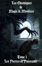 Les Chroniques de Magie & Mystère by mathpad