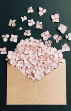 cotton candy [seungjin ft. jeongin & xinlong] by centraldo9ma