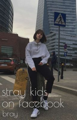 stray kids on facebook