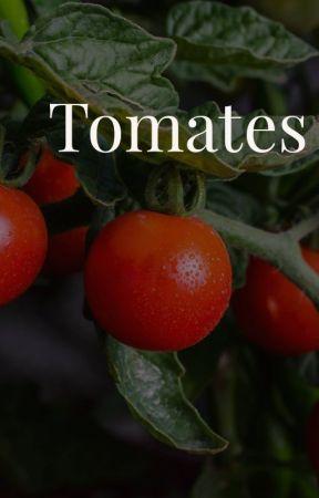 Tomates by Gaby_Rodrz