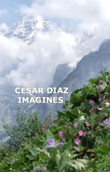 Cesar Diaz Imagines