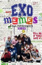EXO MEMES (Na Overdose) by Rumphii