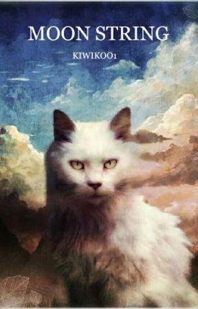 Měsíční Paprsek [Warriors Cats Story]  by kiwikoo1