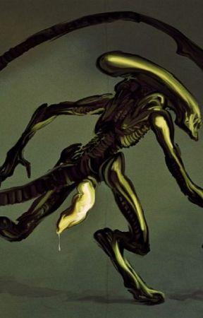 Xenomorph Mating Ritual (xenomorph x xenomorph fanfiction
