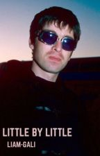 LITTLE BY LITTLE - NOEL GALLAGHER by liam-gali