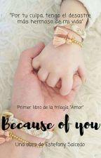 Because of You © #1 [PAUSADA] by Bright_Dim