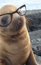 Blew Seals Not Fxxk by Crimson107