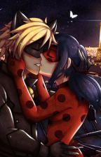 OS Miraculous (Ladybug et Chat Noir) by Kleshy