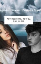 Asylum|| Shawn Mendes by Xmcr7loveX