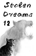 Stolen Dreams Ⅻ by Metato