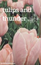 tulips and thunder by littlelimabeann