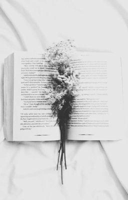 Đọc truyện [Vtrans] ; Omegle ;