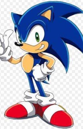 Sonic X Reader The Other Speedy Heghoge Chapter Seven Wattpad