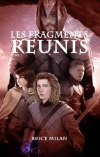 T2 - LES FRAGMENTS RÉUNIS by Morgaste