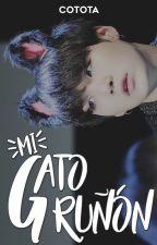 Mi Gato Gruñón [YoonSeok] by CapitanaMomo