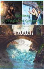 Galadwen//Hobbit ff// 15.Mitglied der Gemeinschaft by Cacki_RainbowUnicorn