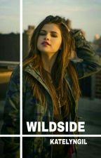 Wildside    Victorious by katelyngil