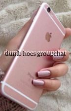 dumb hoes groupchat :) by ohmyjohlinsky