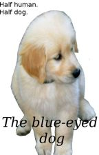 The blue-eyed dog (narry hybrid) by niallersprincess_2