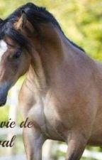 Ma vie de cheval by bambinighttower