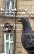 Jesteś gołąbkiem na talerzu mego życia || Komedia romantyczna o gołębiach by Beznazwy0001