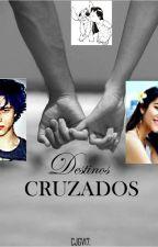 Destinos Cruzados (Lilo y Stitch) by CJGV17