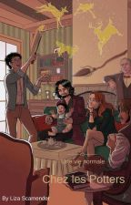 Une vie normale chez les Potters by LizaScamender