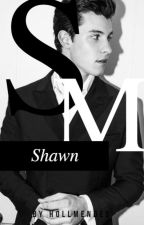 Shawn ~SM by hollmendes