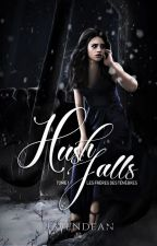 Hush Falls - Tome 1, The Darkness Brothers ( anciennement - Teen Fallen ) by Havendean